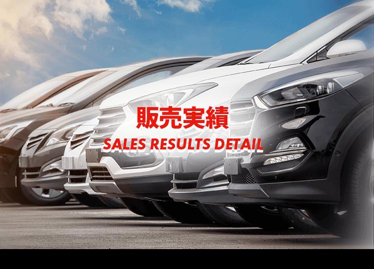 新車販売実績詳細